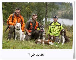 tuxpi.com.tjanster